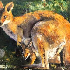 wallaby , joey ,Australian wildlife