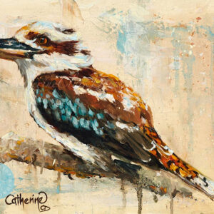 kookaburra, Australian wildlife, Australian bird,